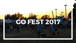 Roanoke's Go Outside Festival | 2017