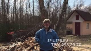 видео Отзывы о нас