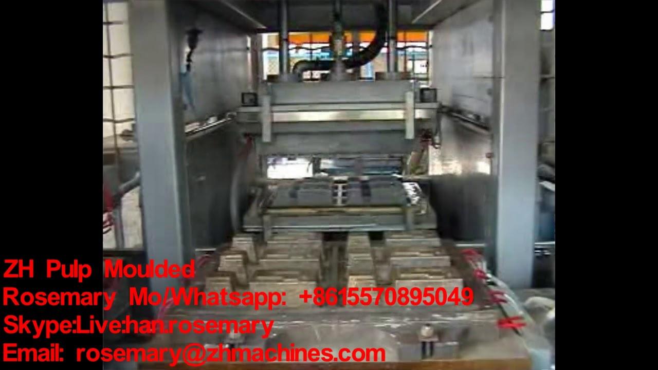 Bagasse pulp, sugarcane pulp Tableware Machine Line for making takeaway box  carton plates