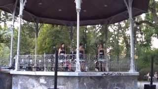 Ein Zusammenschnitt von unserem Konzert im Grazer Stadtpark-Pavillo...