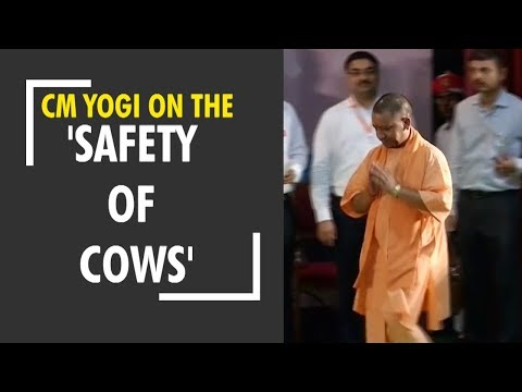 Deshhit: CM Yogi once again stressed on the 'safety of cows'