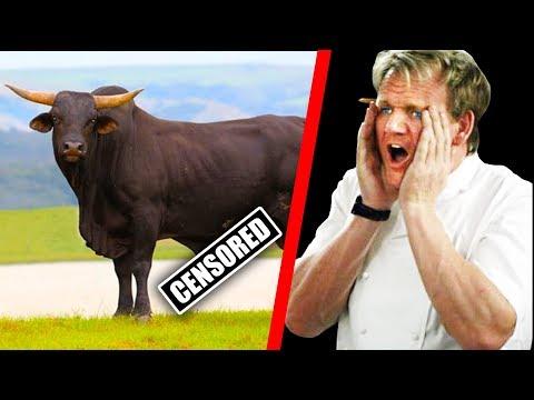 10 Times Gordon Ramsay Ate EXOTIC FOOD! (Part 2)