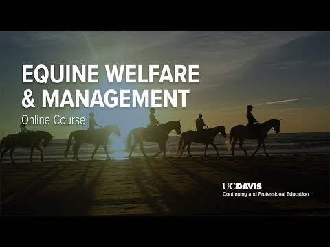 Equine Welfare & Management Online Course | UC Davis Continuing and Professional Education