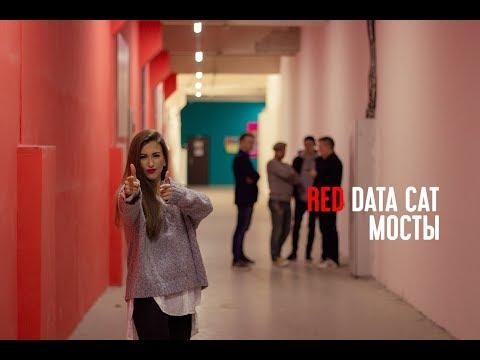 Red Data Cat - Мосты (live)