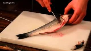Разделка рыбы на филе.Как правильно разделать рыбу?