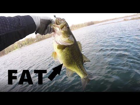 Catching Some FAT Minnesota BASS!