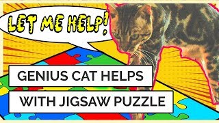 🐈 Genius cat SOLVES a jigsaw puzzle