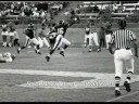 Bring Back Titan Football Photo Montage