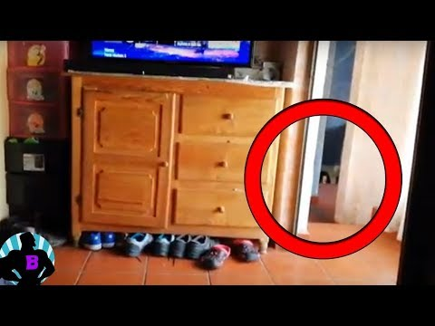5 необъяснимых видео