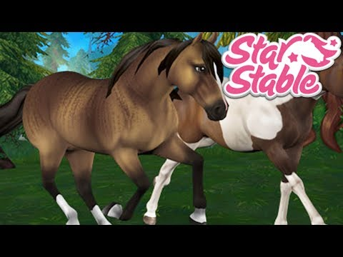 🔴🐴Training, Questing, & Racing! 🐴 | Star Stable Online Live Stream