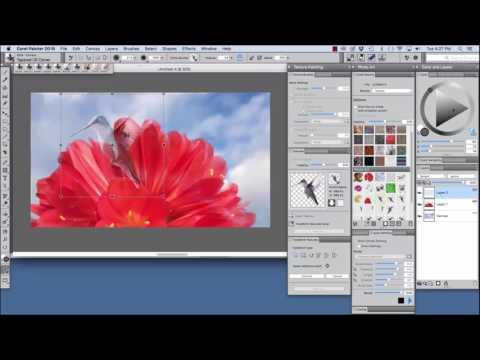 Corel Painter 2018 Digital Art Software NEW Cloning Enhancements
