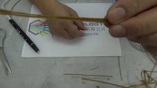 3D Pens Demonstration, Primary Level