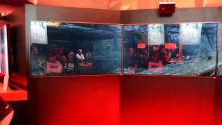 2013 E2 AMD panoramic display