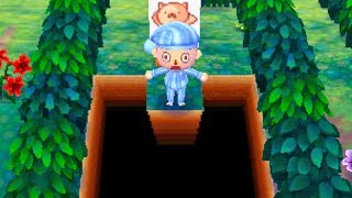 Dream Diary - Animal Crossing: New Leaf | Bottomless Pit