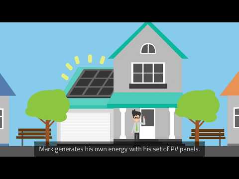 Sustainable energy prosumers