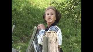Sofia Vicoveanca - Cine-o zis dragoste mare