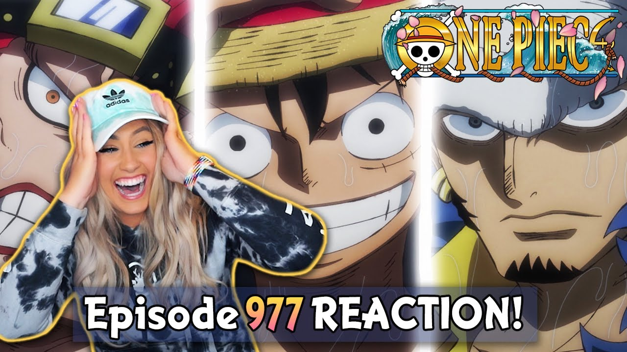 Download KID, LUFFY AND LAW BRING THE HEAT! 🔥To Onigashima! | One Piece Episode 977 Reaction + Review!