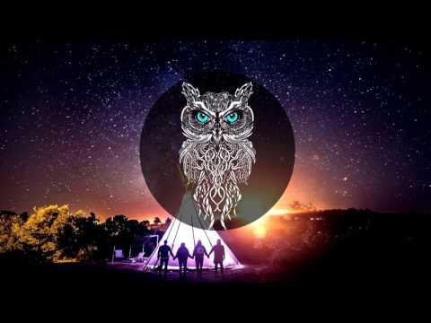 Alter Owl