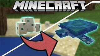 ✔How to Hatch A Turtle Egg - Minecraft 1.13 Update