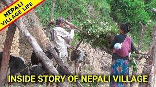 Spending Most Difficult Life In Nepali Village | Nepali Mountain Village lifestyle | IamSuman |