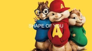 Скачать Shape Of You Chipmunks Version