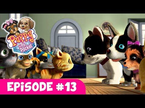 Puppy In My Pocket - Webisode #13
