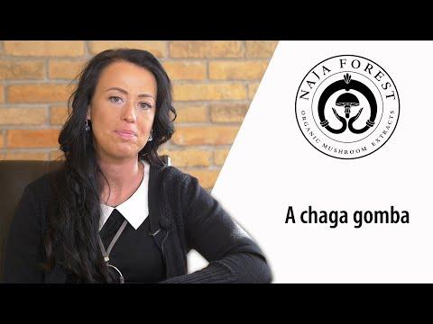Naja Forest Chaga gomba rövid bemutatása