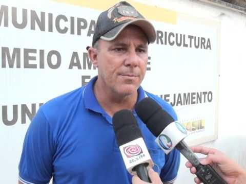 "Projeto ""Amigos Da Natureza"" Realiza Soltura De Mil Tartarugas"