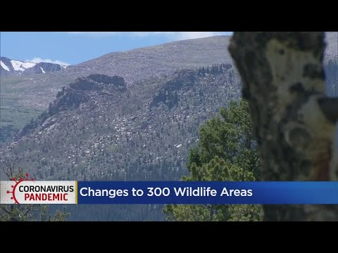 Hunting, Fishing License Required To Visit Colorado Wildlife Areas