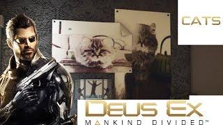 Deus Ex: Mankind Divided - Cats