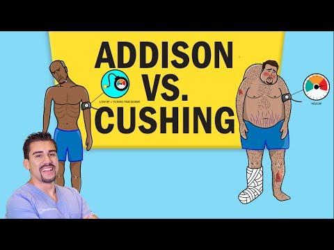 Addisons Vs Cushing's Disease For NCLEX RN