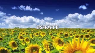 """""""Le quattro stagioni"""" Estate 4.Presto-A.Vivaldi HQ"""