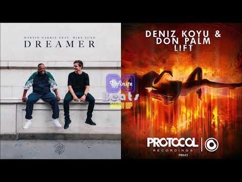 Martin Garrix ft. Mike Young - Dreamer vs. Deniz Koyu & Don Palm - Lift (Infinite Beats Mashup)