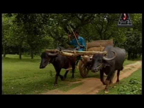 Kemon Acho Bondhu Tumi   Mujib Pardeshi   Album Kemon Acho Bondhu Tumi   Official Music Video