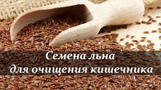 Семена льна для очищения кишечника. Мягкая чистка.