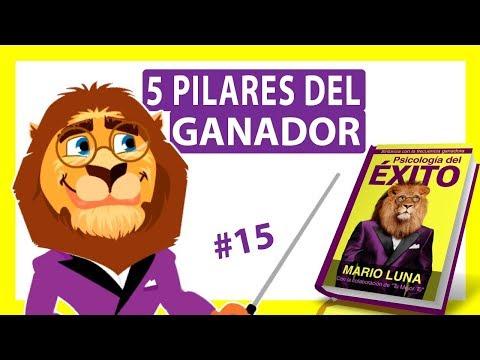 5 Pilares Del Ganador Psicologia Del Exito Mario Luna Audiolibro Animado 15 Youtube