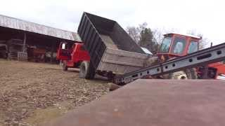 Unloading grain from the1969 Chevy C60 into gravity wagon