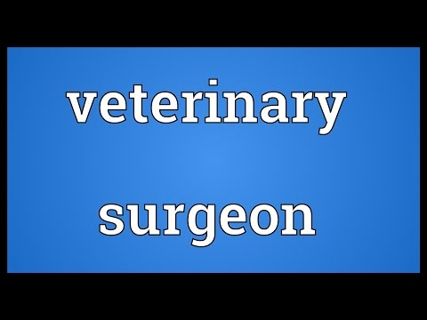 Veterinary surgeon Meaning
