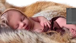 Speed ART Photo Manipulation - baby&fox