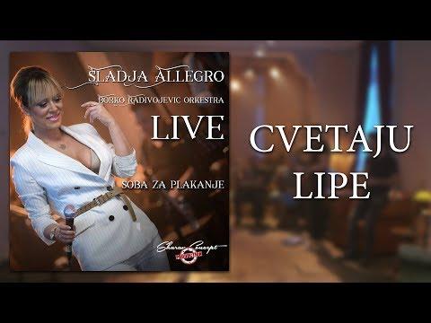 Sladja Allegro - Cvetaju Lipe - (Official Live Video 2017)