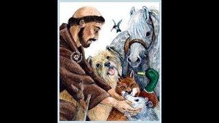 Oração Para A Cura de um Animal de Estimação-