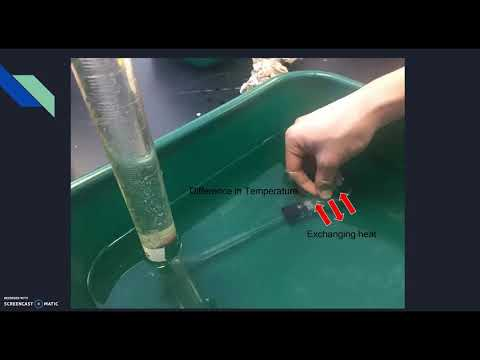 Bio Enzyme Lab Screencast (The effect of temperature)