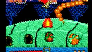 Ghouls 'n Ghosts, SG (Professional, No Deaths)