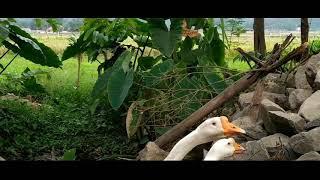 SAM KOLDER INSPIRED #INDONESIA #SEMARANG