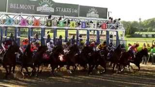 Belmont Stakes: American Pharaoh's Pursuit For The Triple Crown