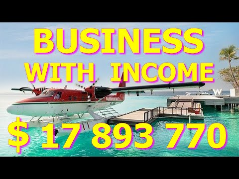 good-franchise!-sale-franchise-pokemon-go-with-income-of-$-17-897-775