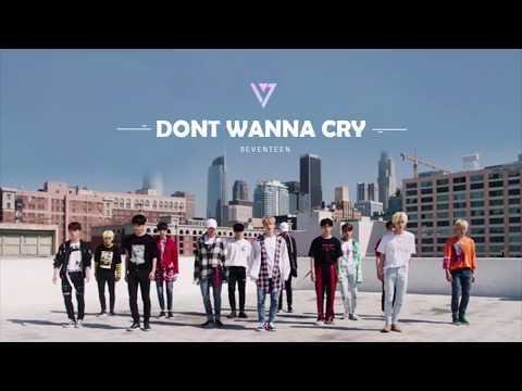 SEVENTEEN세븐틴 - 울고 싶지 않아 Don't Wanna Cry1 HOUR