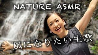 【Relaxing sounds】癒し系の滝の音と子守唄【風になりたい】