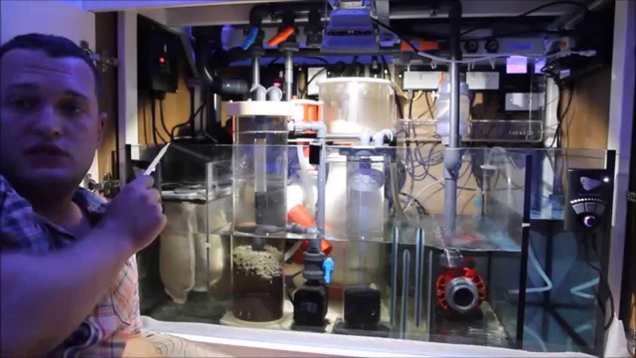 Как сделать самп для аквариума фото 428