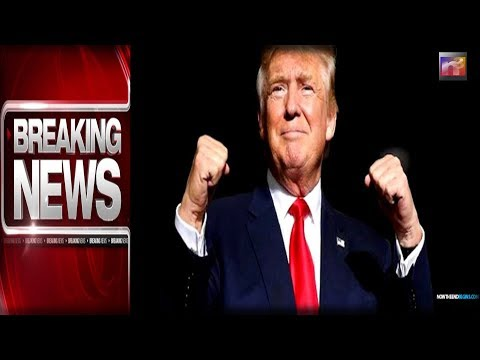BREAKING: After TRUMP LEADS THE WAY One Nation FEARLESSLY Takes Action, SHOCKS the World